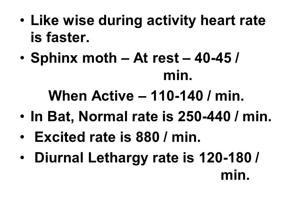 Like wise during activity heart rate is faster. Sphinx moth – At rest – 40-45 / min.