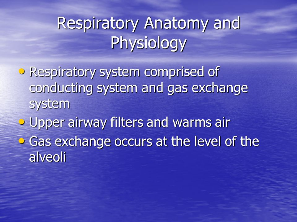 Respiratory Anatomy and Physiology Respiratory system comprised of conducting system and gas exchange system Respiratory system comprised of conducting system and gas exchange system Upper airway filters and warms air Upper airway filters and warms air Gas exchange occurs at the level of the alveoli Gas exchange occurs at the level of the alveoli