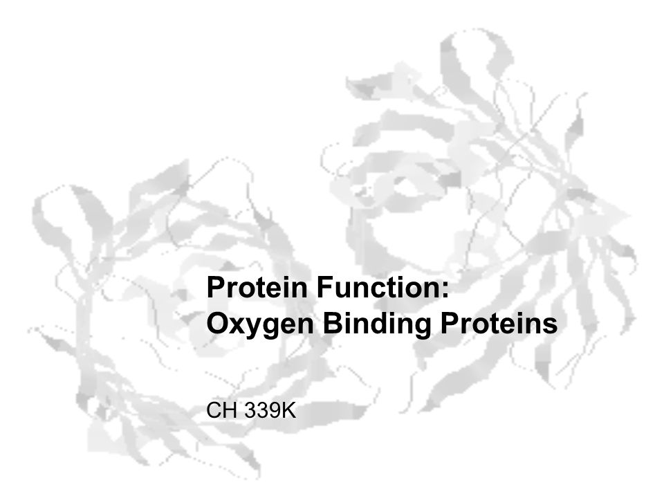 Protein Function: Oxygen Binding Proteins CH 339K
