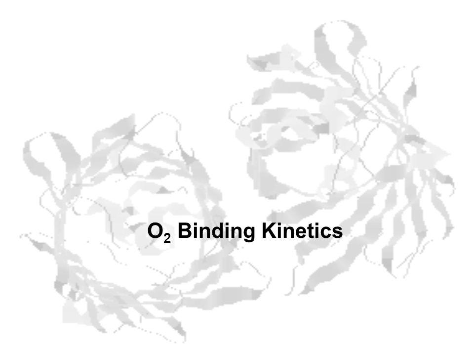 O 2 Binding Kinetics