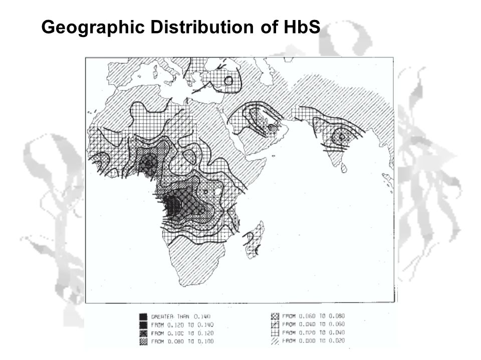 Geographic Distribution of HbS
