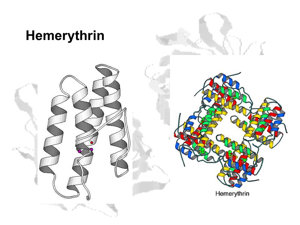 Hemerythrin
