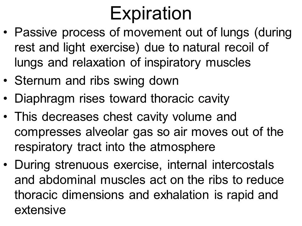 Expiration Passive process of movement out of lungs (during rest and light exercise) due to natural recoil of lungs and relaxation of inspiratory muscles Sternum and ribs swing down Diaphragm rises toward thoracic cavity This decreases chest cavity volume and compresses alveolar gas so air moves out of the respiratory tract into the atmosphere During strenuous exercise, internal intercostals and abdominal muscles act on the ribs to reduce thoracic dimensions and exhalation is rapid and extensive