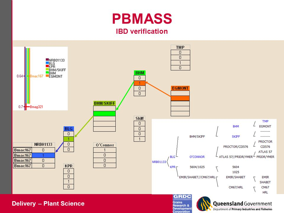 Delivery – Plant Science PBMASS IBD verification
