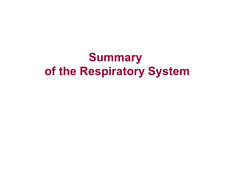Summary of the Respiratory System