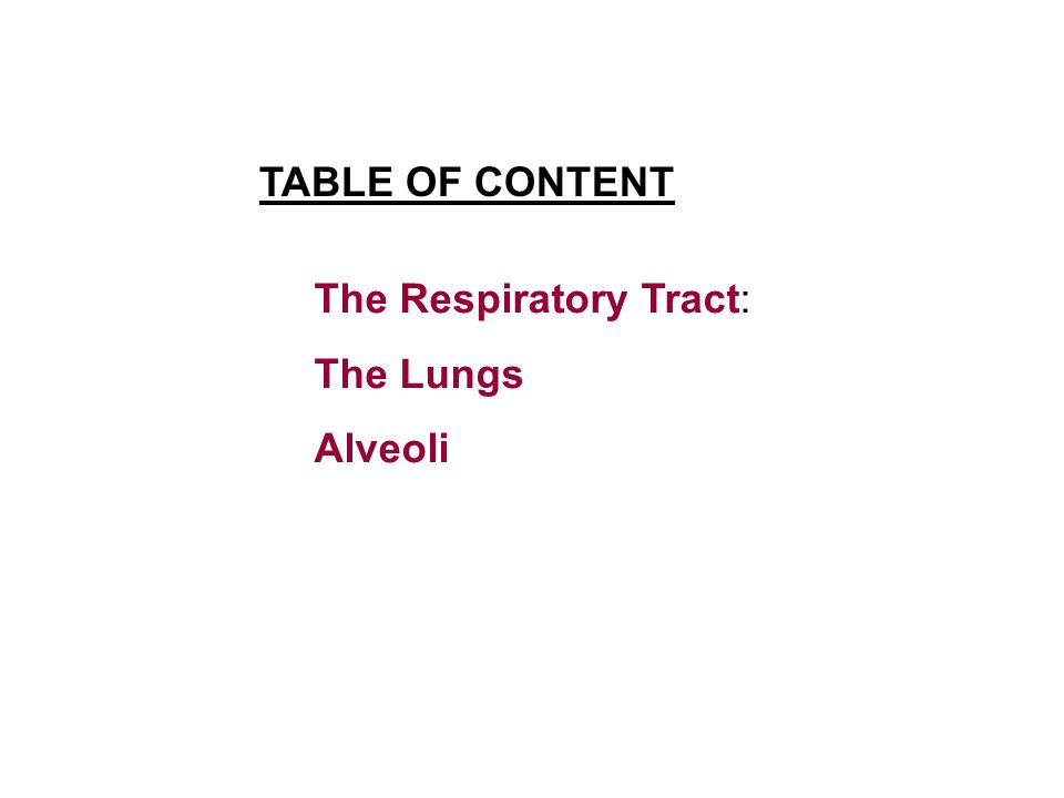 The Respiratory Tract: The Lungs Alveoli TABLE OF CONTENT