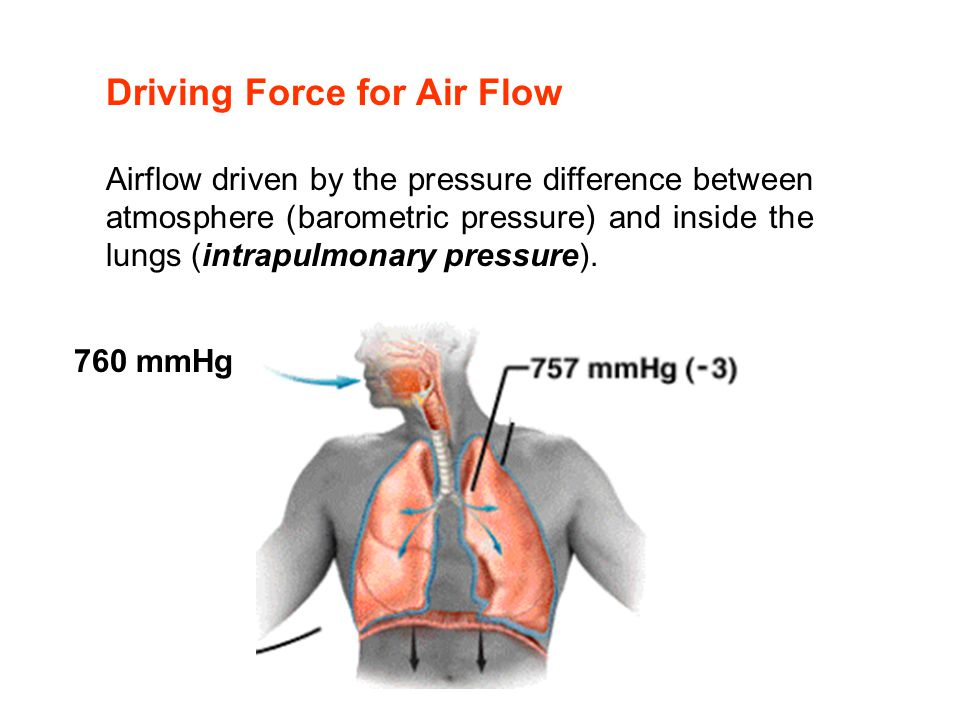 Driving Force for Air Flow Airflow driven by the pressure difference between atmosphere (barometric pressure) and inside the lungs (intrapulmonary pre