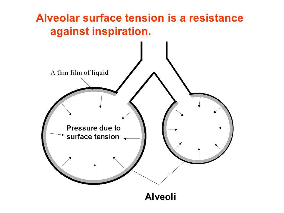 Alveoli Alveolar surface tension is a resistance against inspiration.