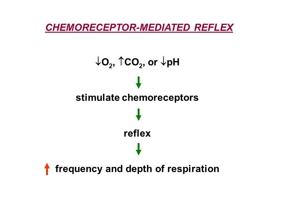  O 2,  CO 2, or  pH stimulate chemoreceptors reflex frequency and depth of respiration CHEMORECEPTOR-MEDIATED REFLEX