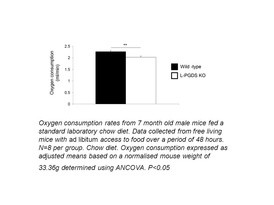 Oxygen consumption rates from 7 month old male mice fed a standard laboratory chow diet.