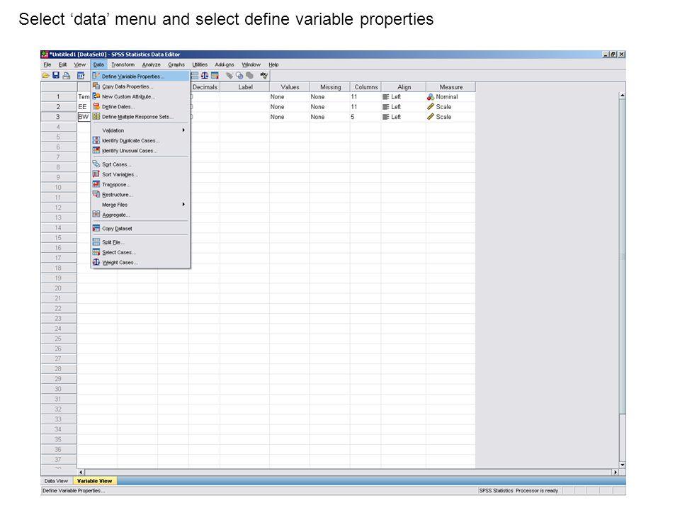 Select 'data' menu and select define variable properties