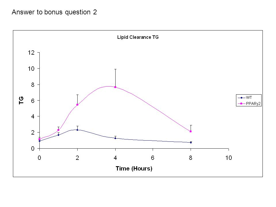 Answer to bonus question 2