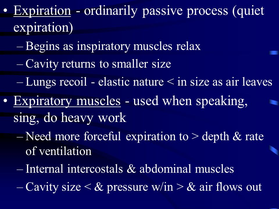 Expiration - ordinarily passive process (quiet expiration) –Begins as inspiratory muscles relax –Cavity returns to smaller size –Lungs recoil - elasti