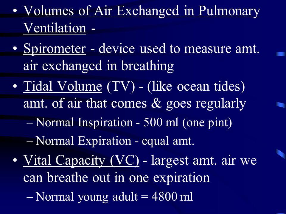 Volumes of Air Exchanged in Pulmonary Ventilation - Spirometer - device used to measure amt. air exchanged in breathing Tidal Volume (TV) - (like ocea
