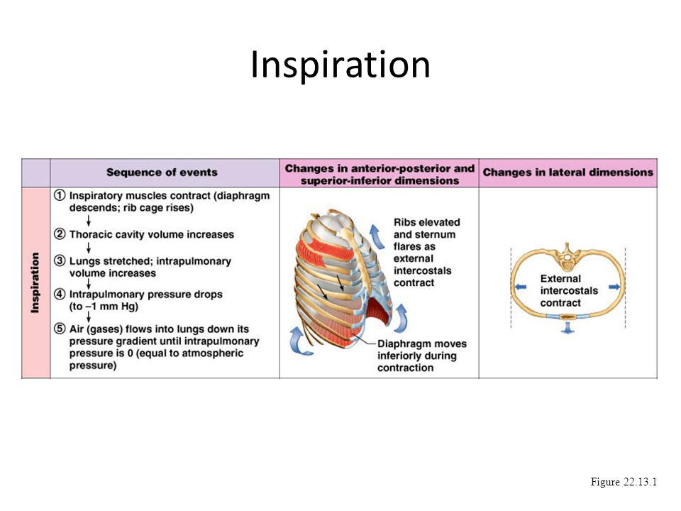 Inspiration Figure 22.13.1