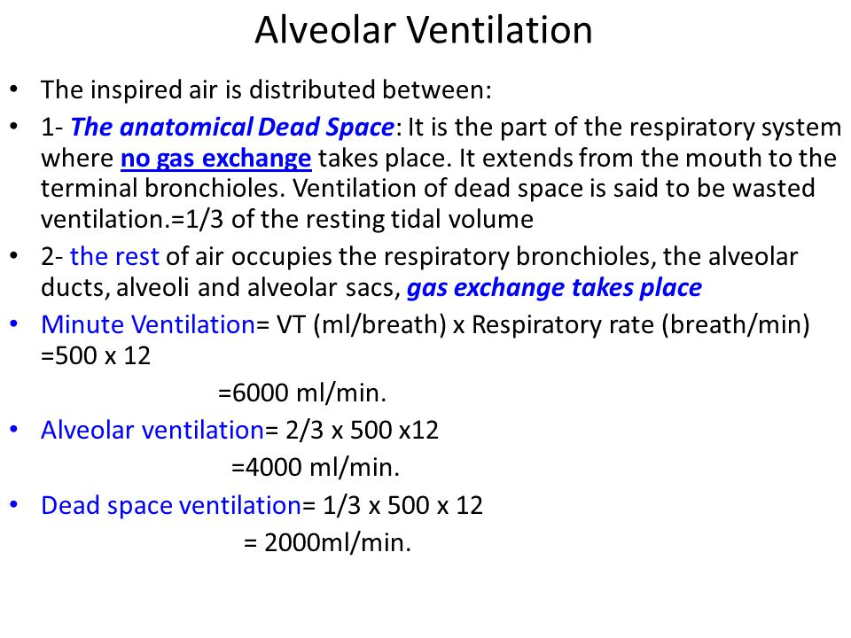 Alveolar Ventilation The inspired air is distributed between: 1- The anatomical Dead Space: It is the part of the respiratory system where no gas exchange takes place.