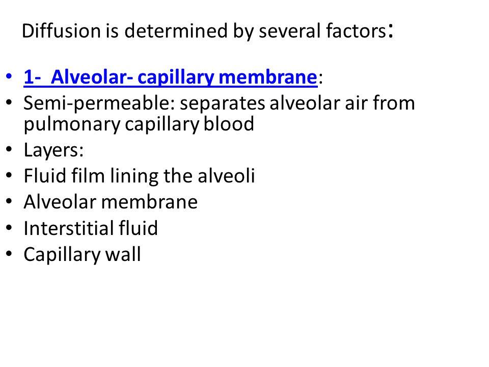 Diffusion is determined by several factors : 1- Alveolar- capillary membrane: Semi-permeable: separates alveolar air from pulmonary capillary blood Layers: Fluid film lining the alveoli Alveolar membrane Interstitial fluid Capillary wall