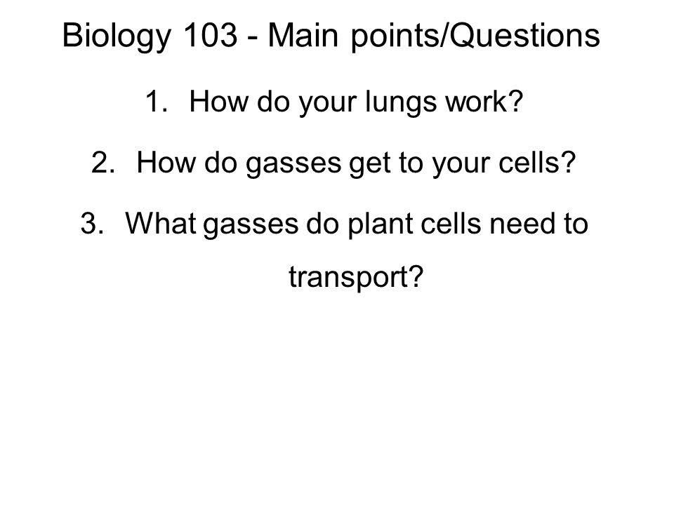 Biology 103 - Main points/Questions 1.How do your lungs work.