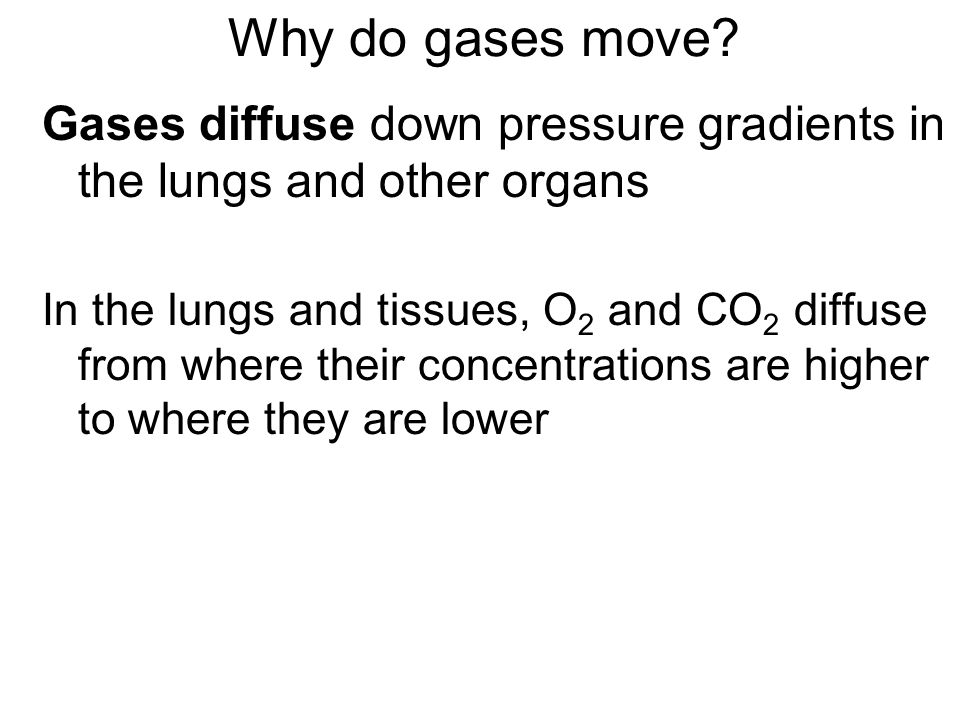 Why do gases move.