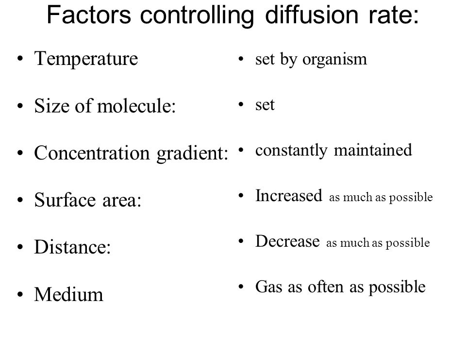 Factors controlling diffusion rate: Temperature Size of molecule: Concentration gradient: Surface area: Distance: Medium set by organism set constantly maintained Increased as much as possible Decrease as much as possible Gas as often as possible