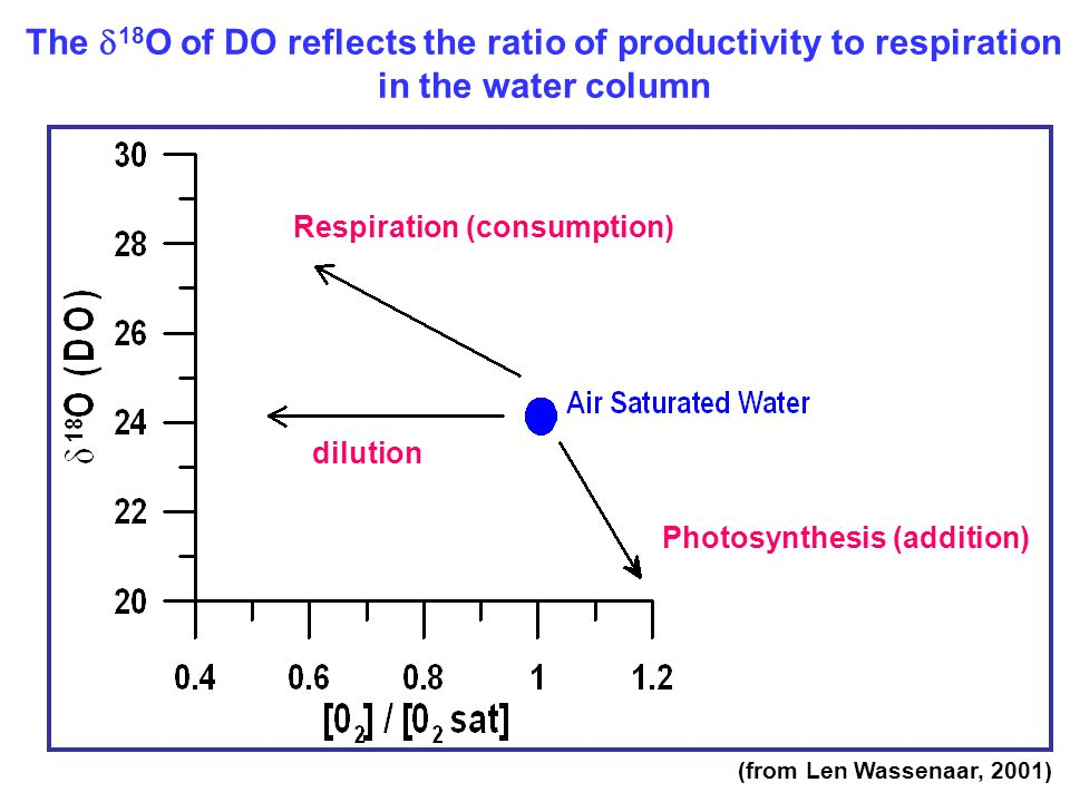 The  18 O of DO reflects the ratio of productivity to respiration in the water column Respiration (consumption) dilution Photosynthesis (addition) (from Len Wassenaar, 2001)
