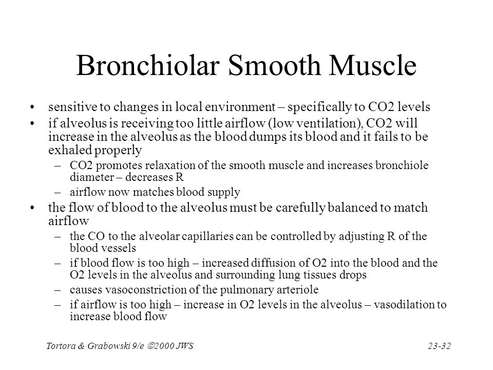 Tortora & Grabowski 9/e  2000 JWS 23-32 Bronchiolar Smooth Muscle sensitive to changes in local environment – specifically to CO2 levels if alveolus