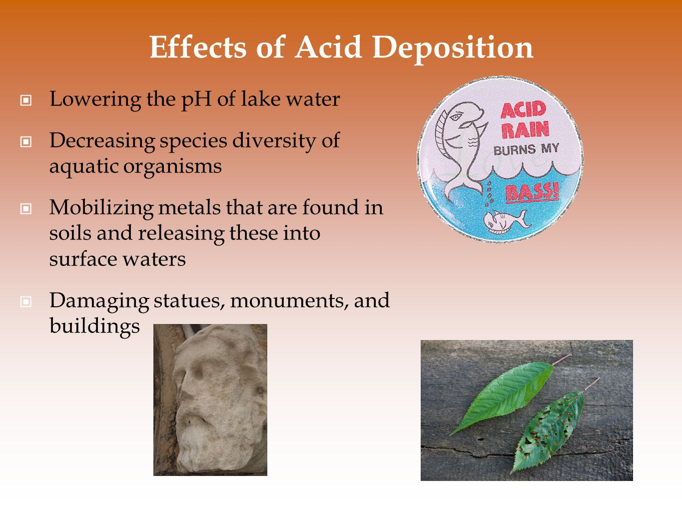 Effects of Acid Deposition Lowering the pH of lake water Decreasing species diversity of aquatic organisms Mobilizing metals that are found in soils a