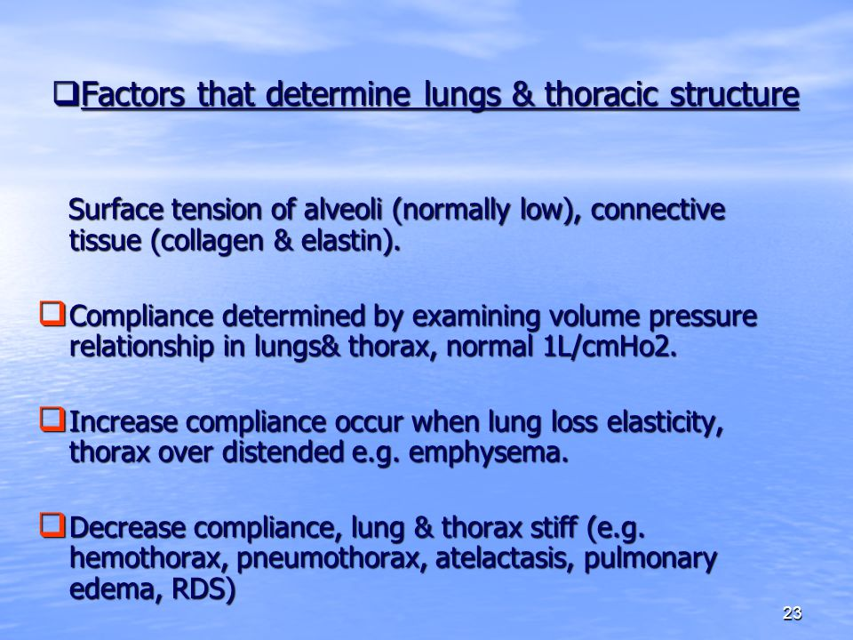 23  Factors that determine lungs & thoracic structure Surface tension of alveoli (normally low), connective tissue (collagen & elastin). Surface tens