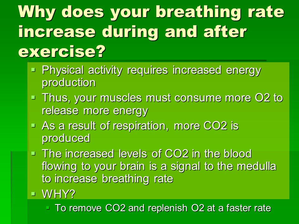 Why does your breathing rate increase during and after exercise.