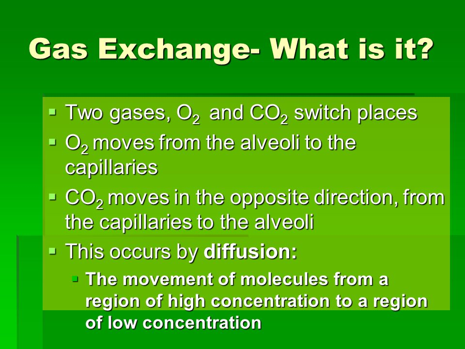 Gas Exchange- What is it?  Two gases, O 2 and CO 2 switch places  O 2 moves from the alveoli to the capillaries  CO 2 moves in the opposite directi