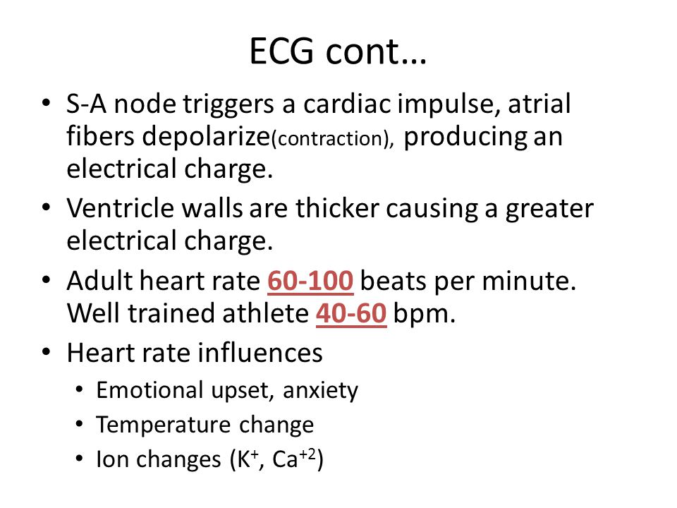 ECG cont… S-A node triggers a cardiac impulse, atrial fibers depolarize (contraction), producing an electrical charge.