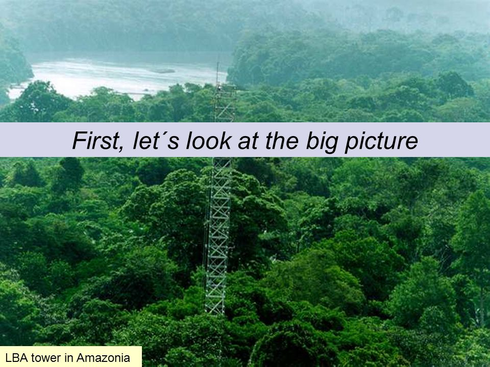 First, let´s look at the big picture LBA tower in Amazonia