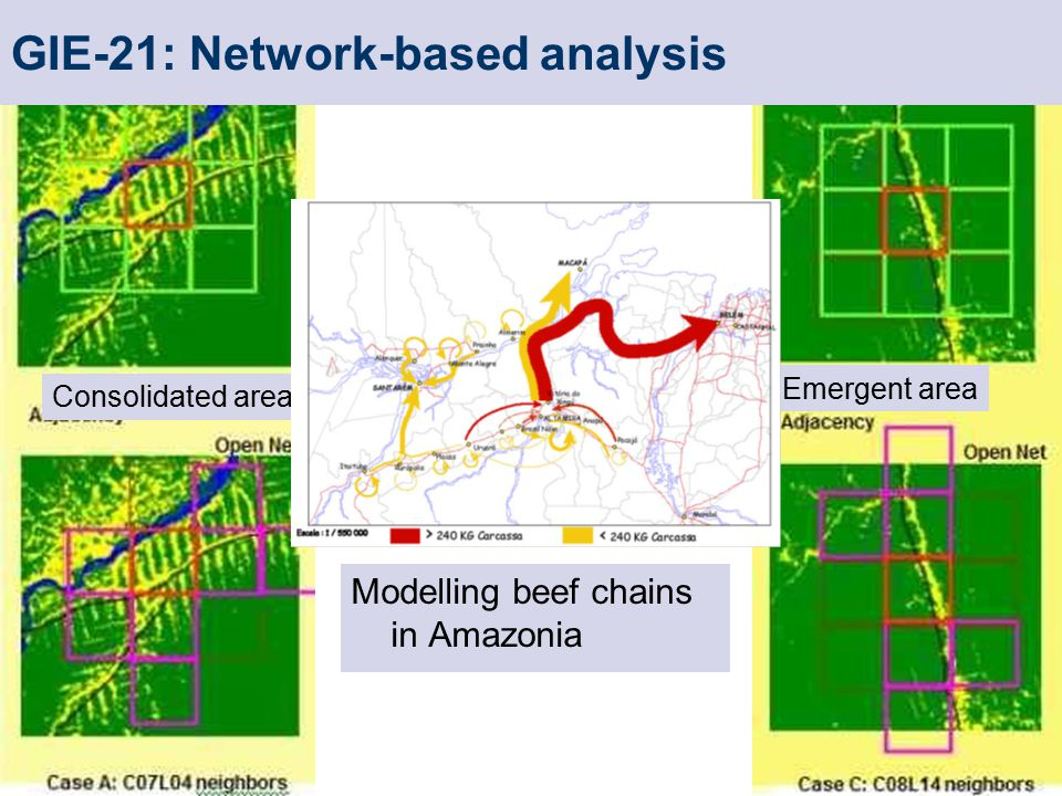 Consolidated area GIE-21: Network-based analysis Emergent area Modelling beef chains in Amazonia