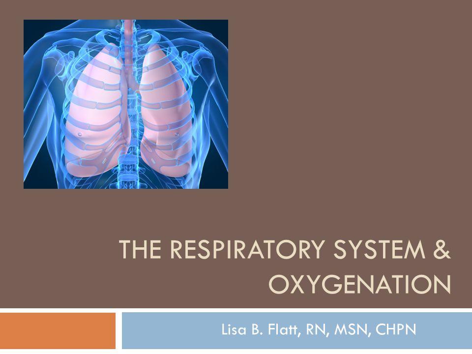 THE RESPIRATORY SYSTEM & OXYGENATION Lisa B. Flatt, RN, MSN, CHPN