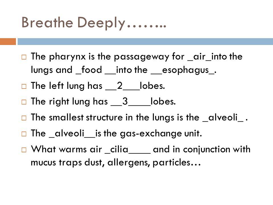 Breathe Deeply……..