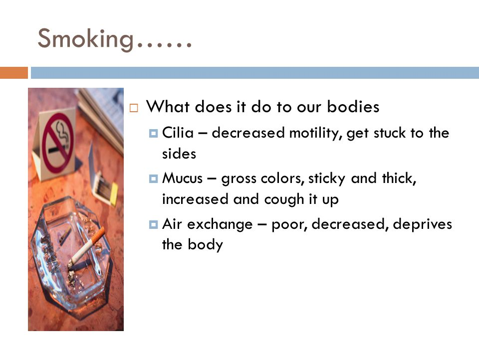 Smoking……  What does it do to our bodies  Cilia – decreased motility, get stuck to the sides  Mucus – gross colors, sticky and thick, increased and cough it up  Air exchange – poor, decreased, deprives the body