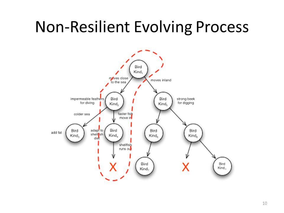 Non-Resilient Evolving Process 10