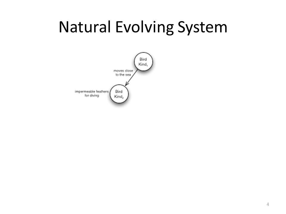 Natural Evolving System 4