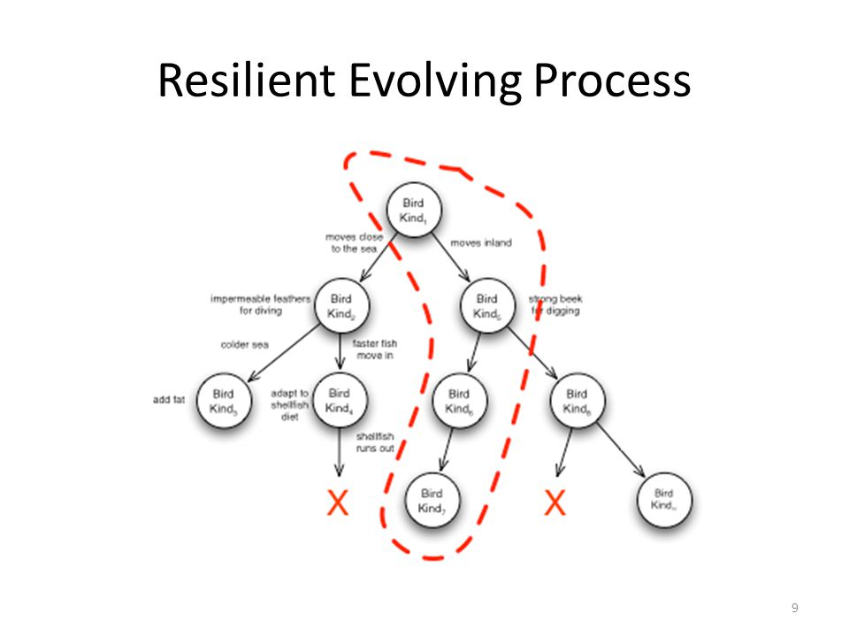 Resilient Evolving Process 9