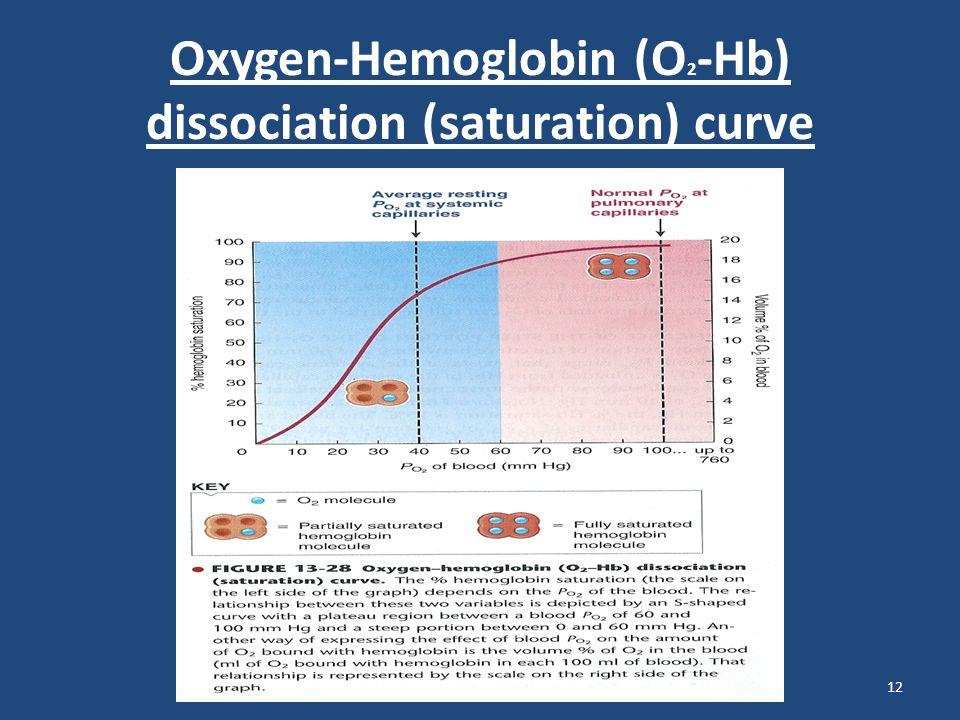 Oxygen-Hemoglobin (O 2 -Hb) dissociation (saturation) curve 12