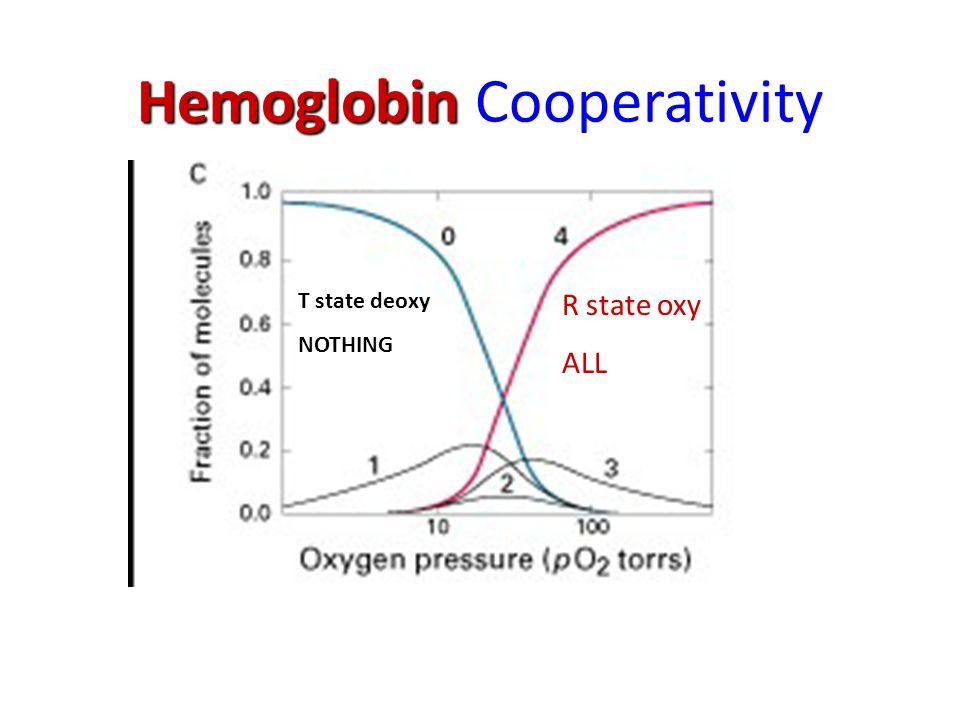Hemoglobin Hemoglobin Cooperativity R state oxy ALL T state deoxy NOTHING
