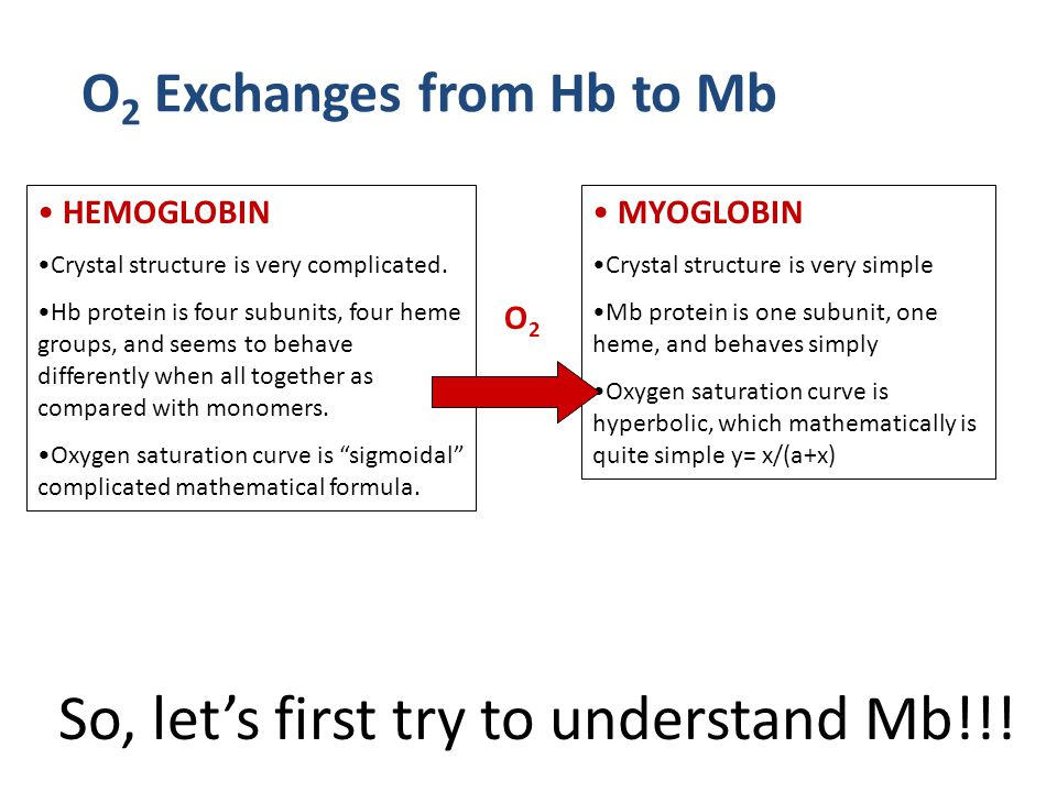 So, let's first try to understand Mb!!. HEMOGLOBIN Crystal structure is very complicated.