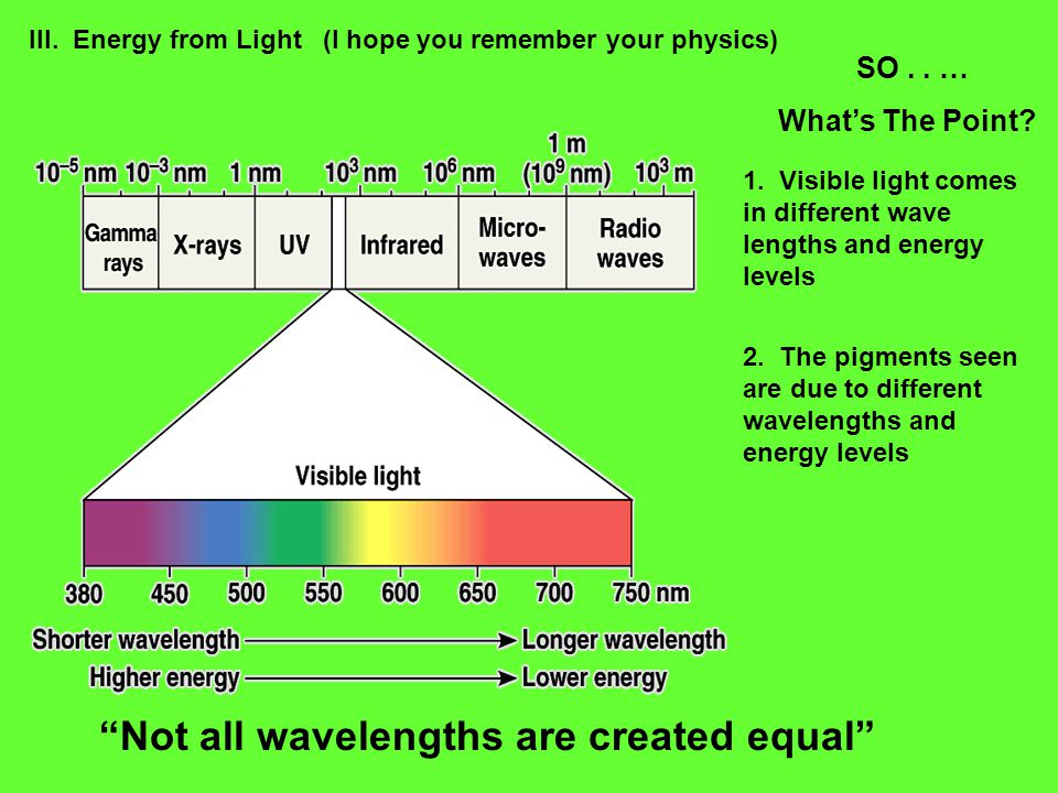 III. Energy from Light (I hope you remember your physics) SO..