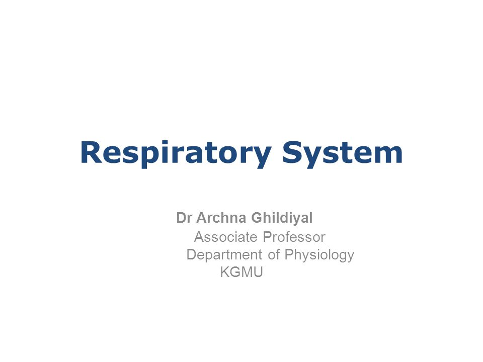Dr Archna Ghildiyal Associate Professor Department of Physiology KGMU Respiratory System