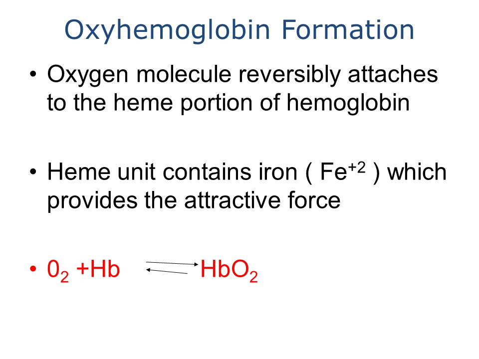 Oxyhemoglobin Formation Oxygen molecule reversibly attaches to the heme portion of hemoglobin Heme unit contains iron ( Fe +2 ) which provides the attractive force 0 2 +Hb HbO 2