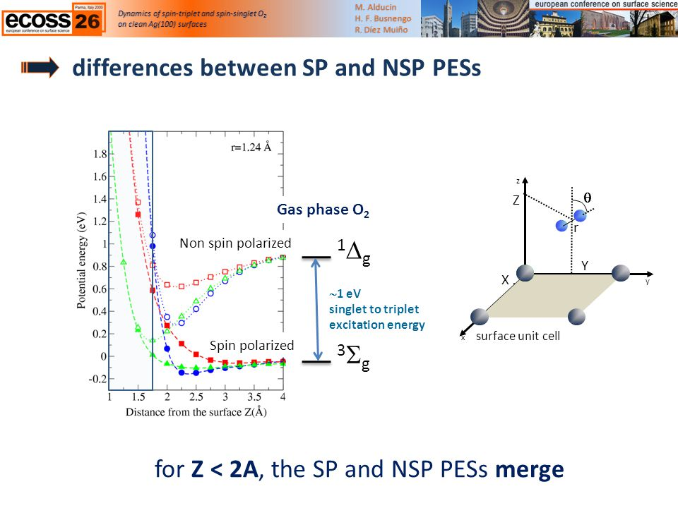 differences between SP and NSP PESs Dynamics of spin-triplet and spin-singlet O 2 on clean Ag(100) surfaceson clean Ag(100) surfaces M.