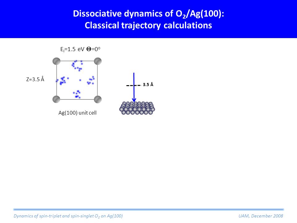 Dissociative dynamics of O 2 /Ag(100): Classical trajectory calculations Z=3.5 Å Ag(100) unit cell Dynamics of spin-triplet and spin-singlet O 2 on Ag(100)UAM, December 2008 E i =1.5 eV  =0 o 3.5 Å