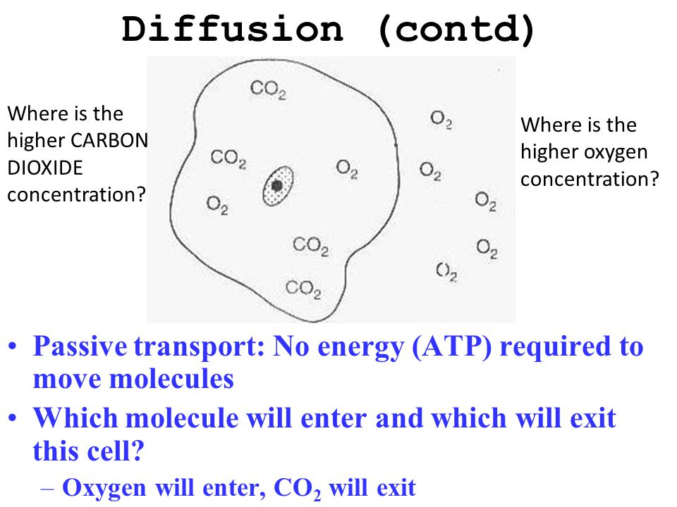 Diffusion: Movement of molecules from an area of high to low concentration Movement continues until equilibrium is reached –Equilibrium: molecules spr