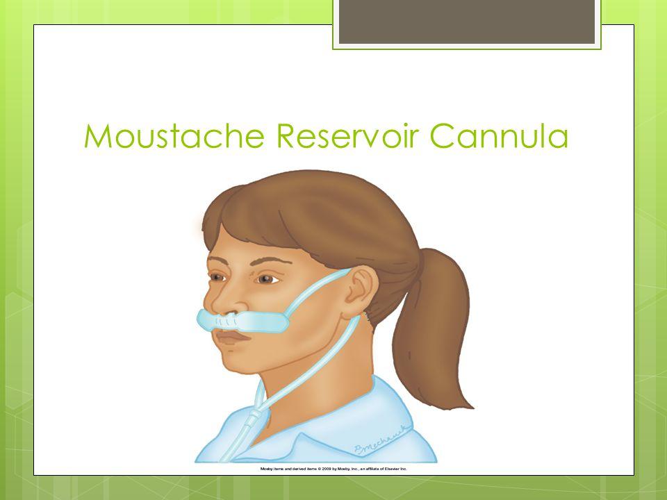 Moustache Reservoir Cannula