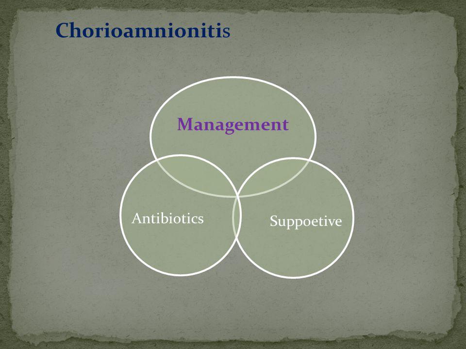 Management Suppoetive Antibiotics Chorioamnionitis